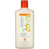 Andalou Naturals, Шампунь, глубокое увлажнение, для мягкости, гладкости и блеска, «Аргановое масло и масло ши», 340мл (11,5 жидк.унций)