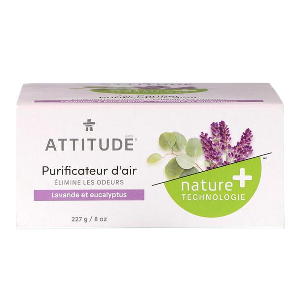 Natural Air Purifier, Lavender & Eucalyptus, 8 oz (227 g)