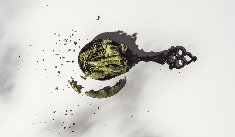 Dried lemon balm herb leaves in spoon on white background.
