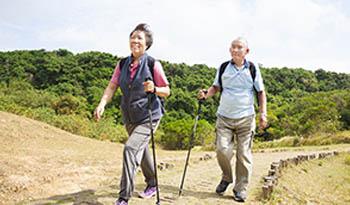 Естественный подход к лечению остеопороза