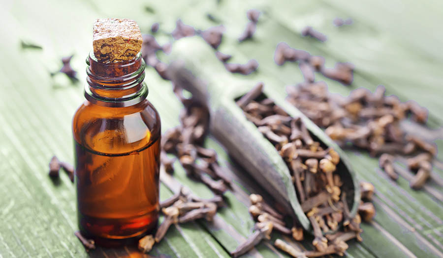 Clove Toothache Compress for Pain Relief