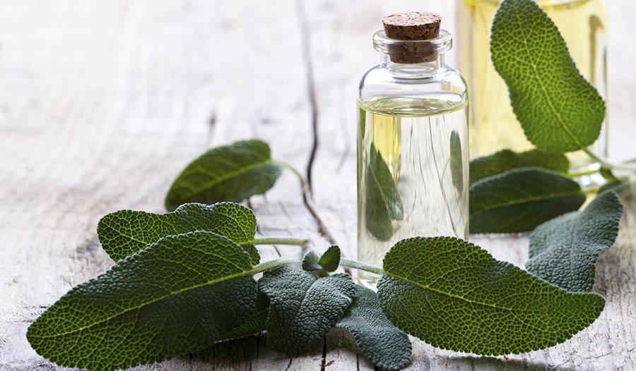 Essential Oils for Instant Focus