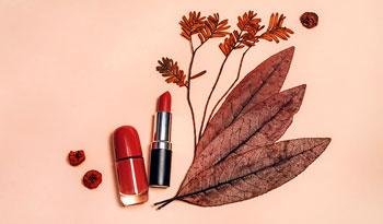 Готовы к уроку по созданию осеннего макияжа?