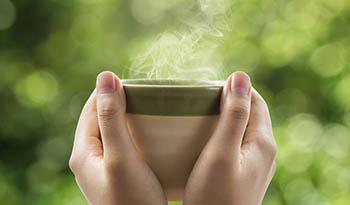 Рецепт горячего чая с грибами рейши от Fungiology