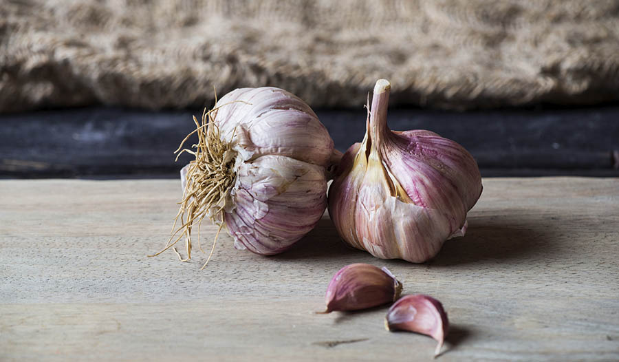 Garlic, Cholesterol and Immune Function