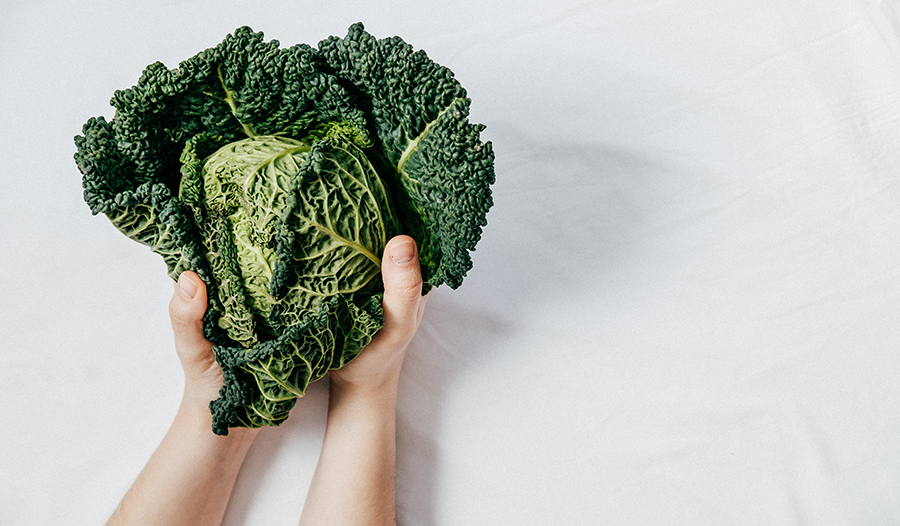 Green leaves of fresh kale in hands against white background