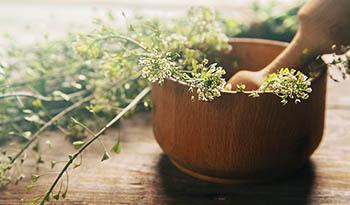 Фитосомы – улучшите усваивание экстрактов лекарственных трав!