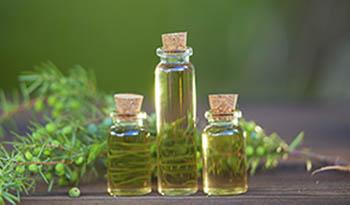 Масло чайного дерева для лечения акне