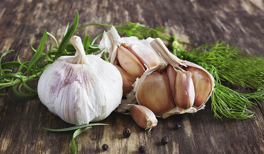 Sources of prebiotics: garlic on a wooden table