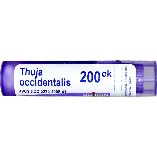 Boiron, Single Remedies, Туя западная, 200 СК, 80 гранул