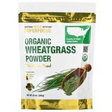 Amazing Grass, Таблетки из органических ростков пшеницы, 200 таблеток - iHerb