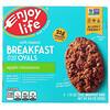 Enjoy Life Foods, Овальные мягкие печенья с фруктами и овсянкой, яблоко и корица, 5штук, 50г (1,76 унции) каждое
