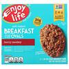 Enjoy Life Foods, Овальный батончик с фруктами и овсянкой, ягодное ассорти, 5шт., 50г каждый