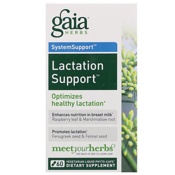 SystemSupport, Lactate Support, поддержка лактации, 60 жидкостных растительных фитокапсул