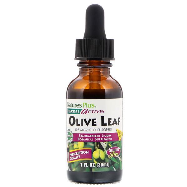 Herbal Actives, из листьев оливы, без спирта, 1 жидкая унция (30 мл)