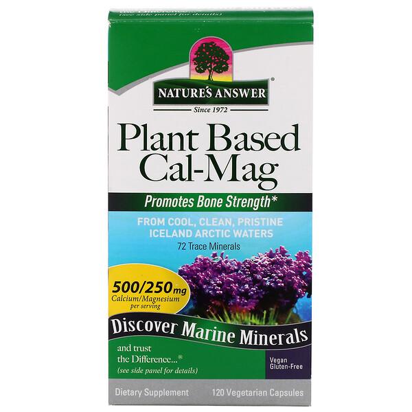 Cal-Mag на растительной основе, 500/250 мг, 120 вегетарианских капсул