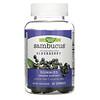 Nature's Way, Sambucus, стандартизированный экстракт бузины, 60жевательных таблеток