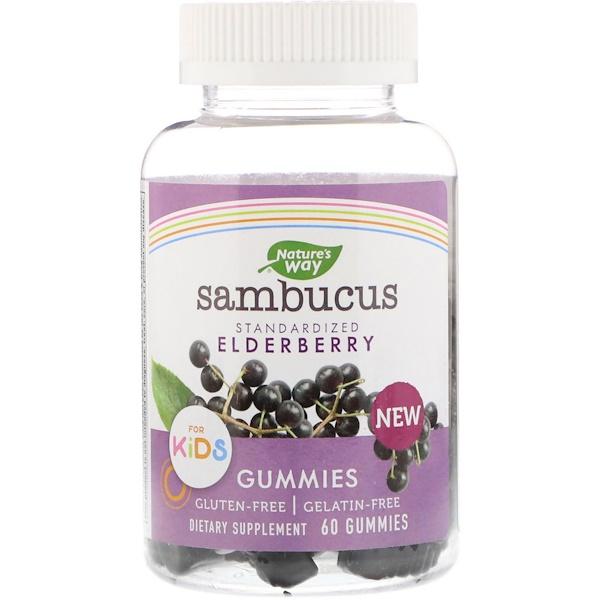 Nature's Way, Sambucus, стандартизированный экстракт бузины для детей, 60жевательных таблеток