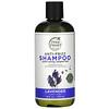 Petal Fresh, Pure, Shampoo, Anti-Frizz Lavender, 16 fl oz (475 ml)