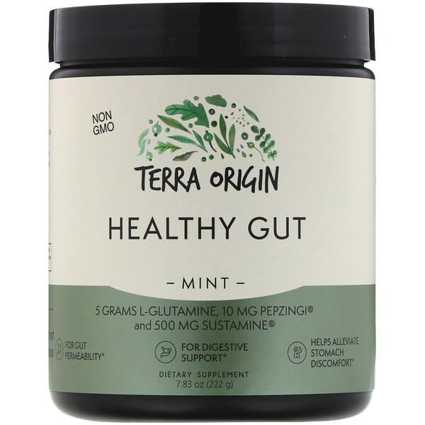 Terra Origin, Добавка для нормализации функций желудочно-кишечного тракта, вкус мяты, 222г (7,83 унции)