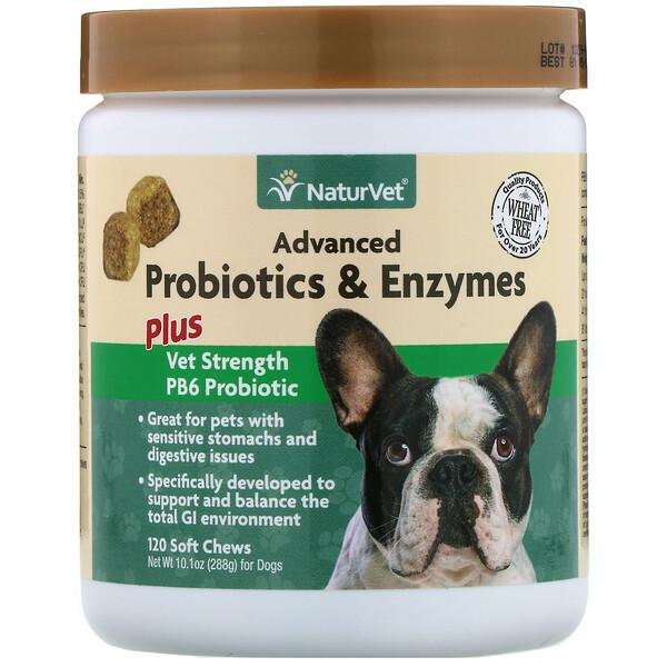 Улучшенные пробиотики и ферменты, а также пробиотик Vet Strength PB6 для собак, 120 жевательных таблеток