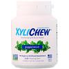 Xylichew, Жевательная резинка, подслащенная березовым ксилитом, перечная мята, 60 штук, 2,75 унций (78 г)