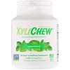 Xylichew, Spearmint, 60 Pieces, 2.75 oz (78 g)