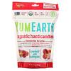 YumEarth, Органические леденцы, любимые фрукты, 368,5 г